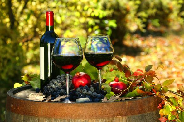 Degustacja wina - Brunello di montalcino
