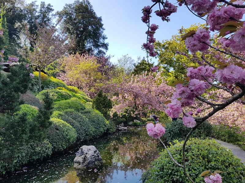 orto botanico rzym ciekawe miejsca