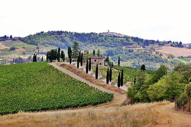 czerwone wino z toskanii chianti